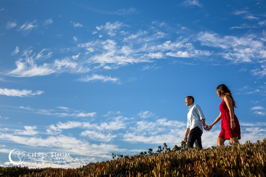 San_Francisco_wedding_photographer_Engagement_session_SantaCruz_boardwalk_Natural_bridges_07