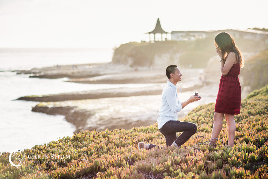 San_Francisco_wedding_photographer_Engagement_session_SantaCruz_boardwalk_Natural_bridges_10