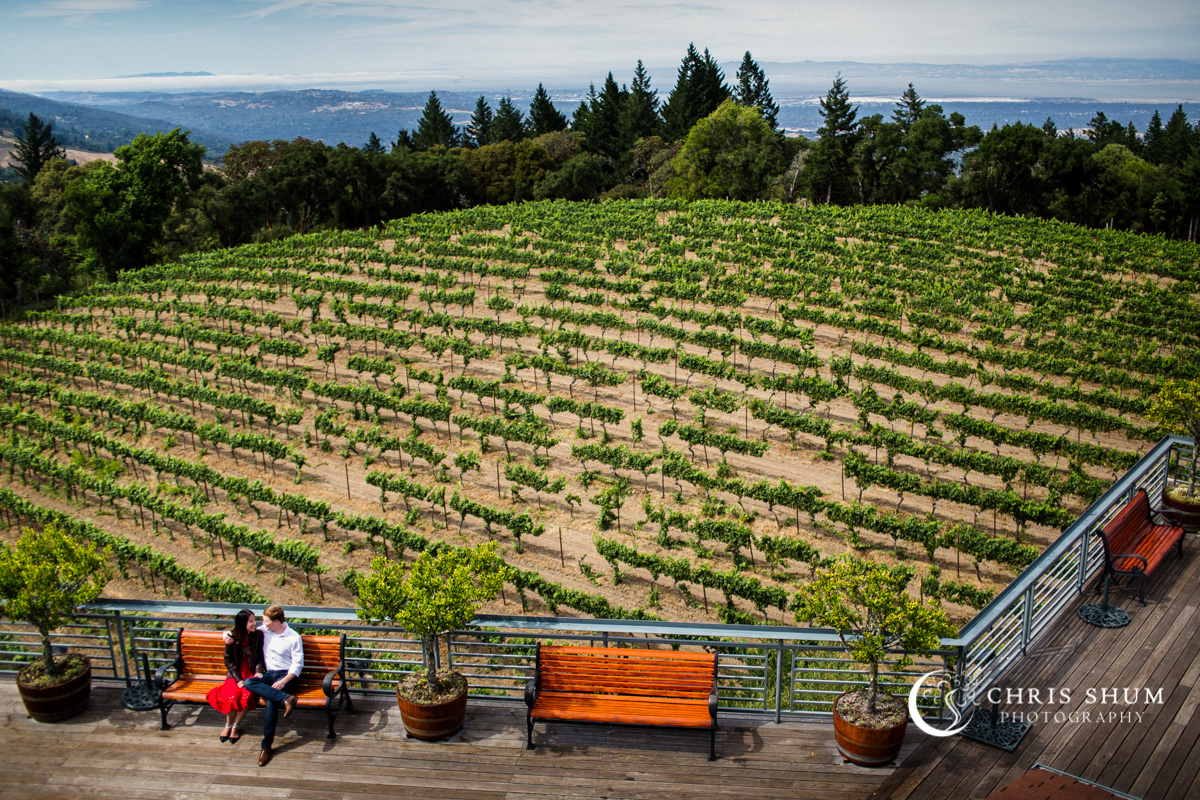 San_Francisco_San_Jose_wedding_photographer_Thomas_Fogarty_Winery_eSession_06