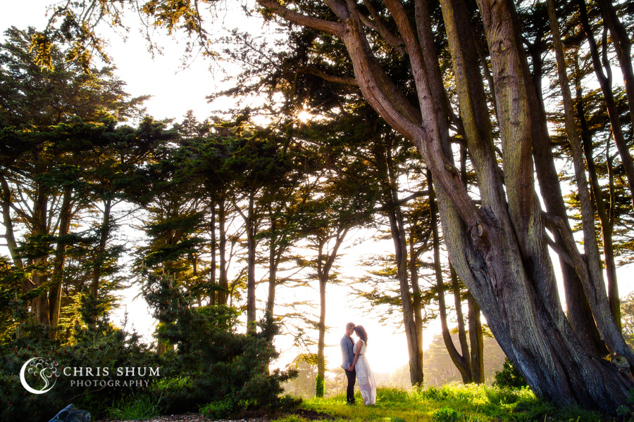 San_Francisco_San_Jose_wedding_photographer_Crissy_Field_Legion_of_Honor_eSession_01