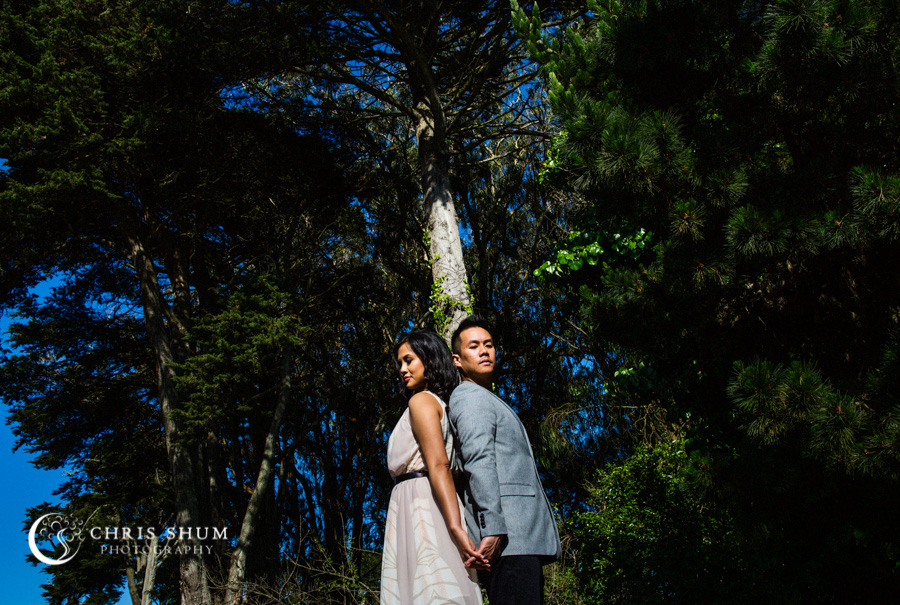 San_Francisco_San_Jose_wedding_photographer_Crissy_Field_Legion_of_Honor_eSession_07