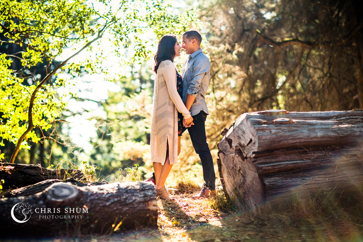 San_Francisco_San_Jose_wedding_photographer_Oakland_Hills_eSession_06