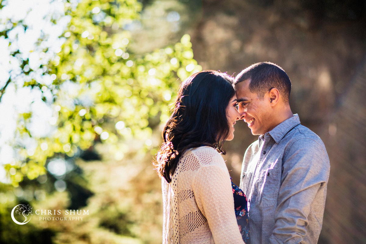San_Francisco_San_Jose_wedding_photographer_Oakland_Hills_eSession_07