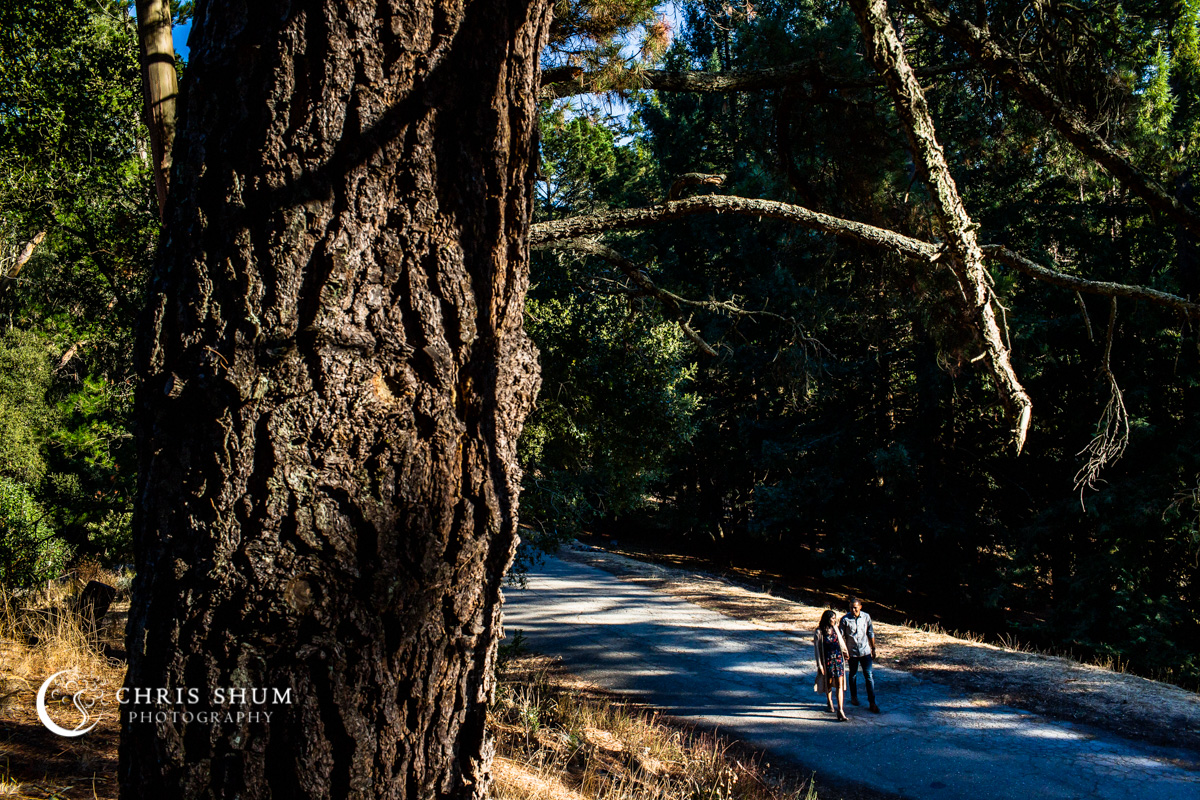 San_Francisco_San_Jose_wedding_photographer_Oakland_Hills_eSession_12
