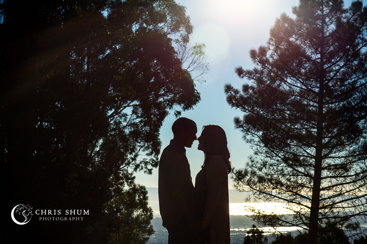 San_Francisco_San_Jose_wedding_photographer_Oakland_Hills_eSession_16