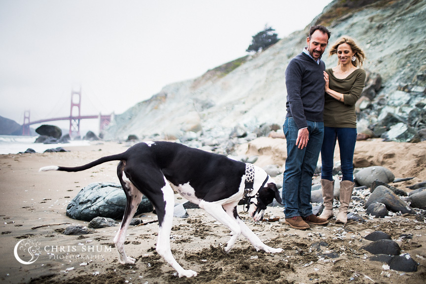 San_Francisco_wedding_photographer_Engagement_session_with_furry_babies_at_Marshall_Beach_06