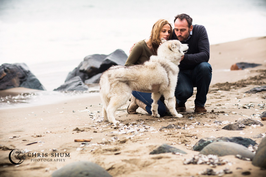 San_Francisco_wedding_photographer_Engagement_session_with_furry_babies_at_Marshall_Beach_09