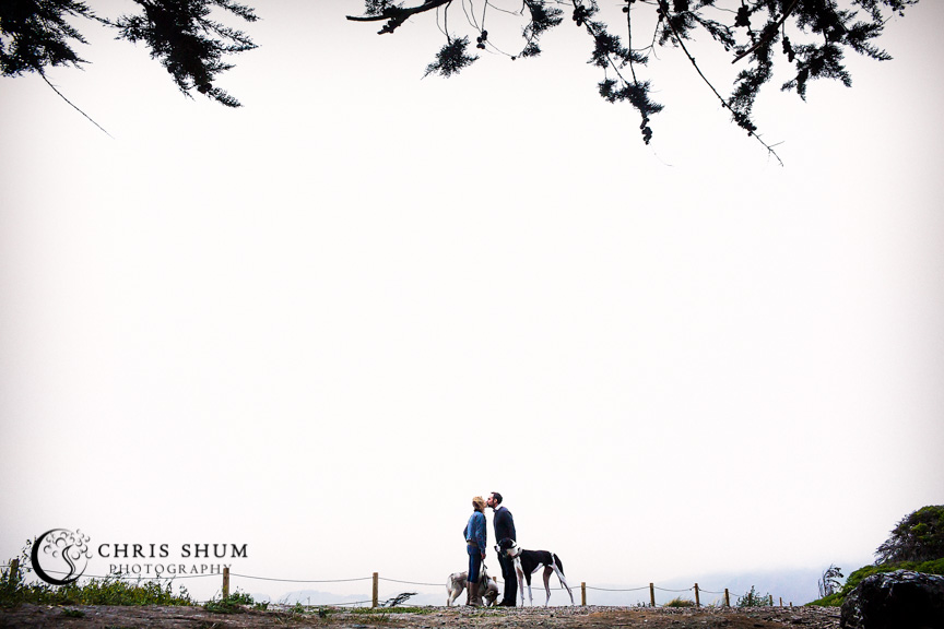 San_Francisco_wedding_photographer_Engagement_session_with_furry_babies_at_Marshall_Beach_15