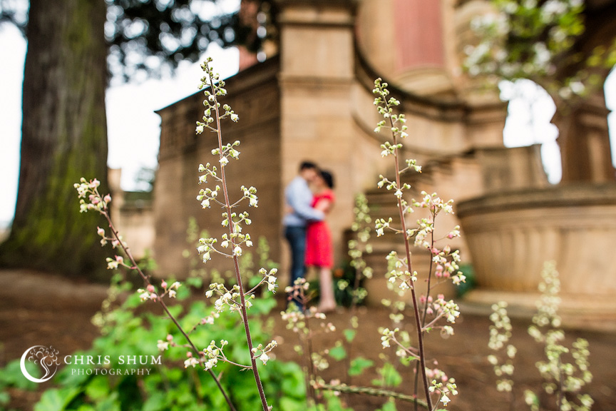 San_Francisco_wedding_photographer_Engagement_session_Palace_of_Fine_Arts_04