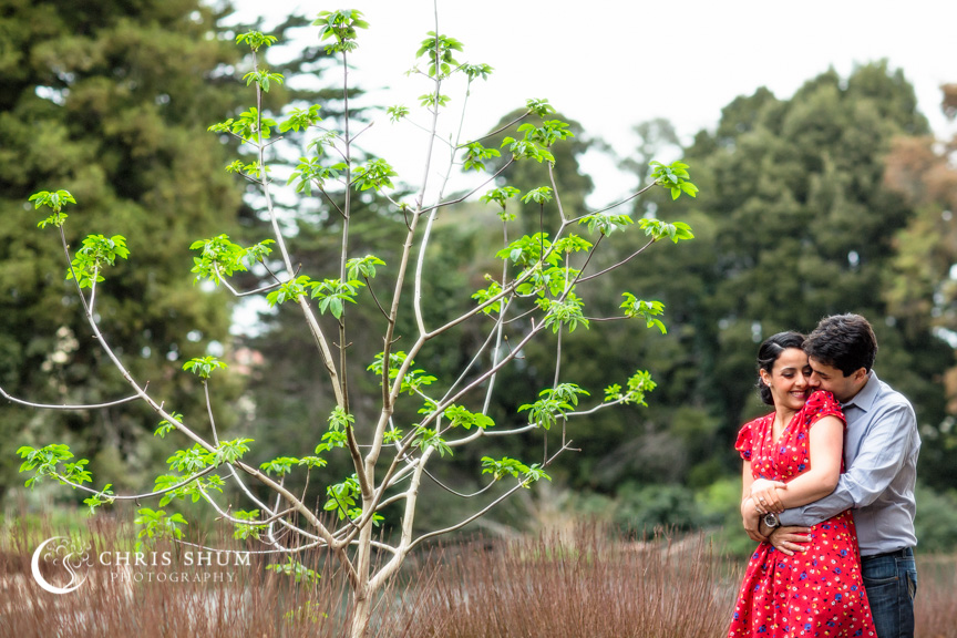 San_Francisco_wedding_photographer_Engagement_session_Palace_of_Fine_Arts_05