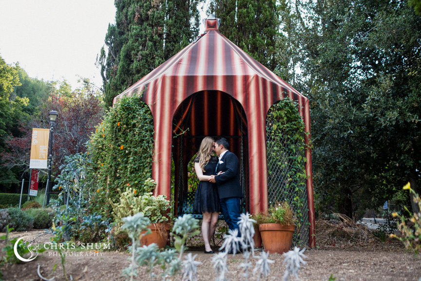San_Francisco_wedding_photographer_Engagement_session_Villa_Montalvo_11