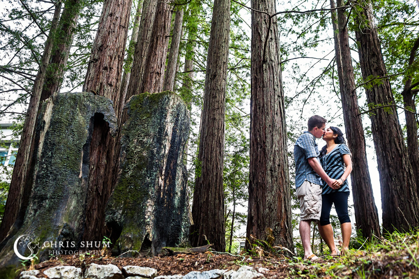 San_Francisco_wedding_photographer_Engagement_session_UC_Santa_Cruz_Natural_Bridges_06