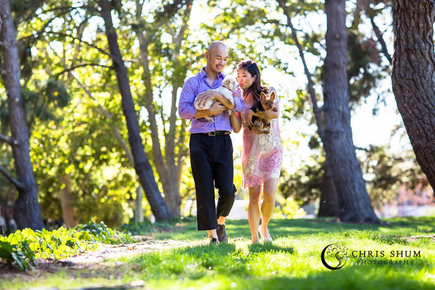 Bay_area_family_kids_photographer_maternity_baby_bump_and_furry_babies_07