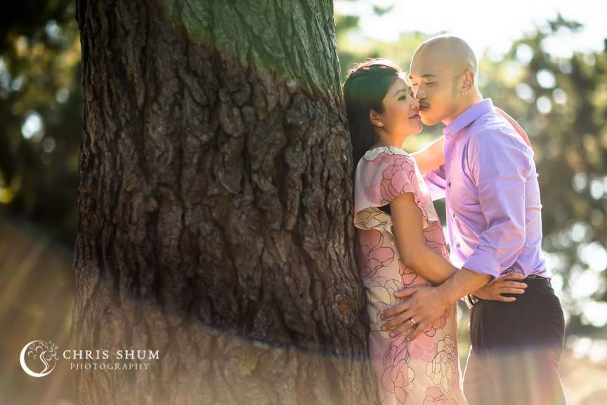 Bay_area_family_kids_photographer_maternity_baby_bump_and_furry_babies_08