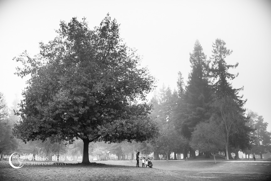 Foggy_morning_at_Cuesta_Park_Lovely_Family_Session_11