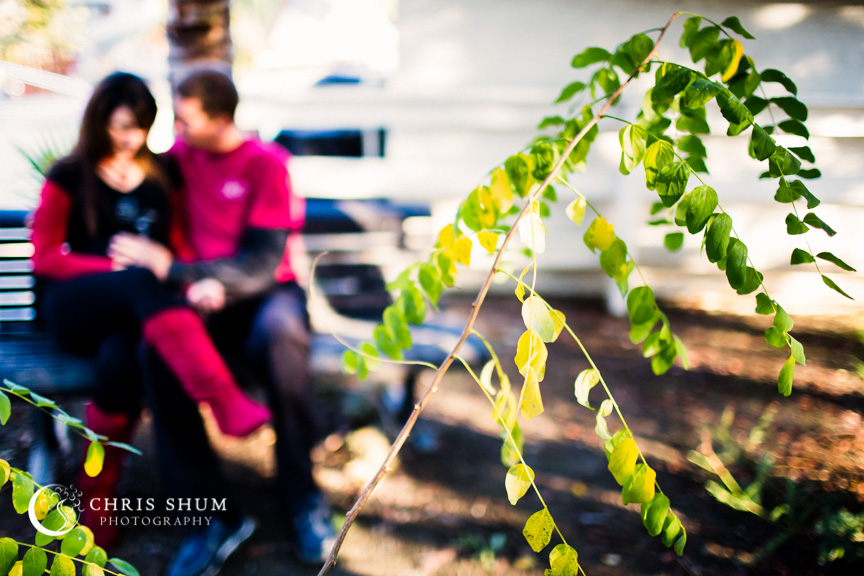 San_Francisco_San Jose_family_kids_photographer_maternity_baby_bump_session_ourBackYard_12