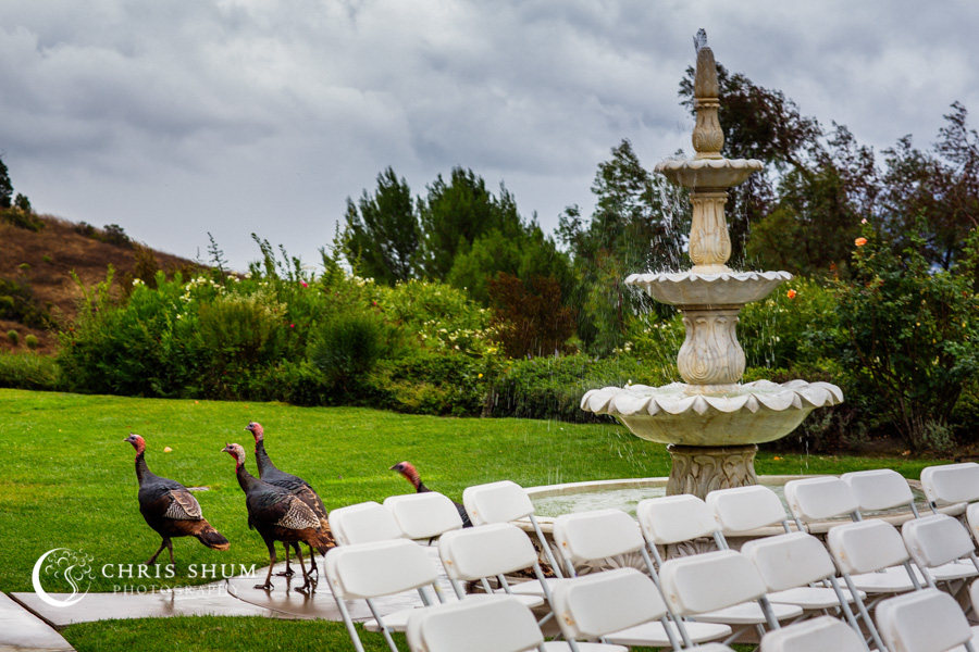 San_Francisco_wedding_photographer_San_Ramon_Canyon_View_Wedding_Romance_In_the_Rain_19