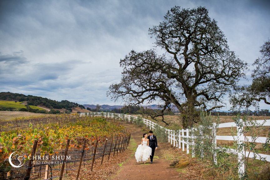 San_Francisco_Wedding_Photographer_Napa_Valley_Meritage_Resort_01