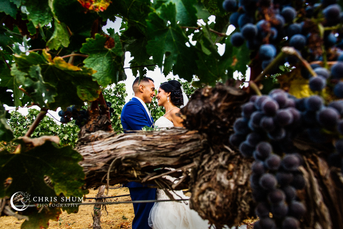 San_Francisco_wedding_photographer_Livermore_Garre_Vineyard_Wedding_01