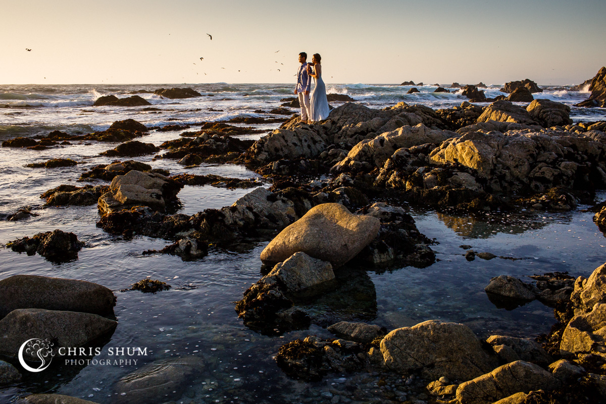 San_Francisco_wedding_photographer_Carmel_By_The_Sea_Hyatt_Carmel_Outdoor_Wedding_01