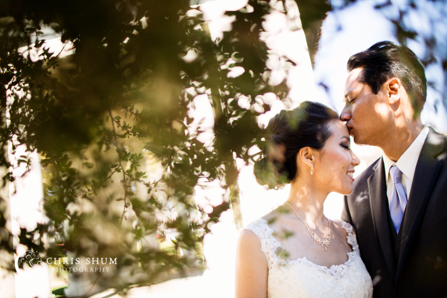 San_Francisco_wedding_photographer_Oakland_Jack_London_Square_Pergola_Lake_Merritt_Preservation_Park_01