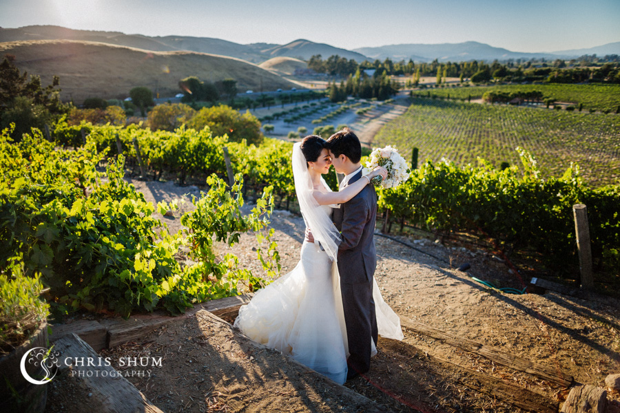San_Francisco_wedding_photographer_Inn_Marin_Novato_Viansa_Sonoma_Winery_Wedding_01