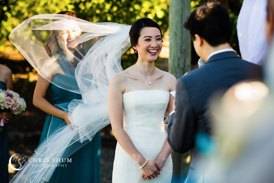 San_Francisco_wedding_photographer_Inn_Marin_Novato_Viansa_Sonoma_Winery_Wedding_28