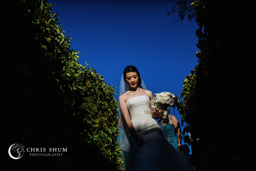 San_Francisco_wedding_photographer_Inn_Marin_Novato_Viansa_Sonoma_Winery_Wedding_38