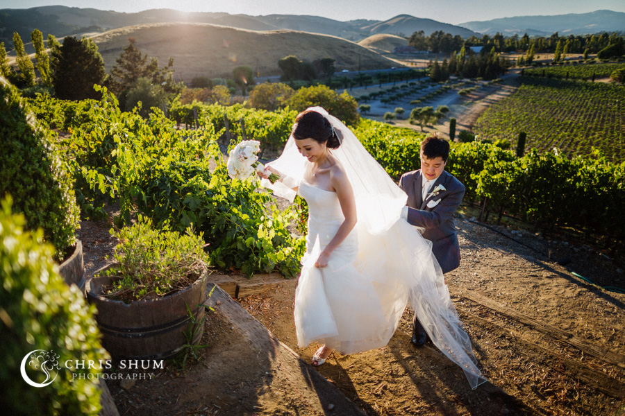 San_Francisco_wedding_photographer_Inn_Marin_Novato_Viansa_Sonoma_Winery_Wedding_41