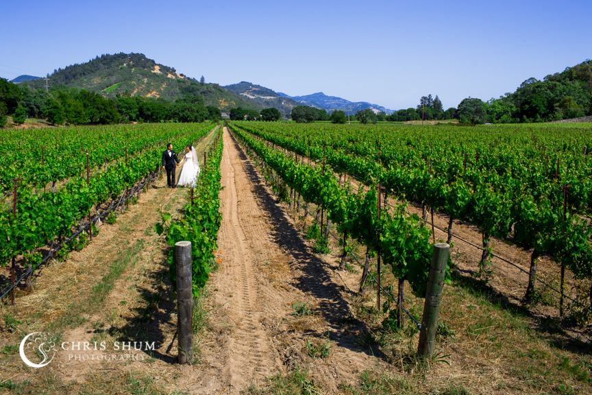 San_Francisco_wedding_photographer_Napa_Valley_Auberge_du_Soleil_wedding_01