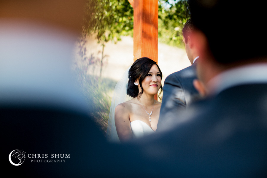 San_Francisco_wedding_photographer_Hilton_Sonoma_Wine_Country_Paradise_Ridge_Winery_16