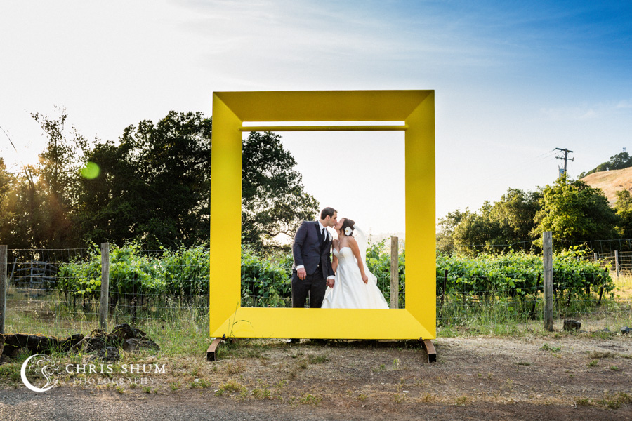 San_Francisco_wedding_photographer_Hilton_Sonoma_Wine_Country_Paradise_Ridge_Winery_26