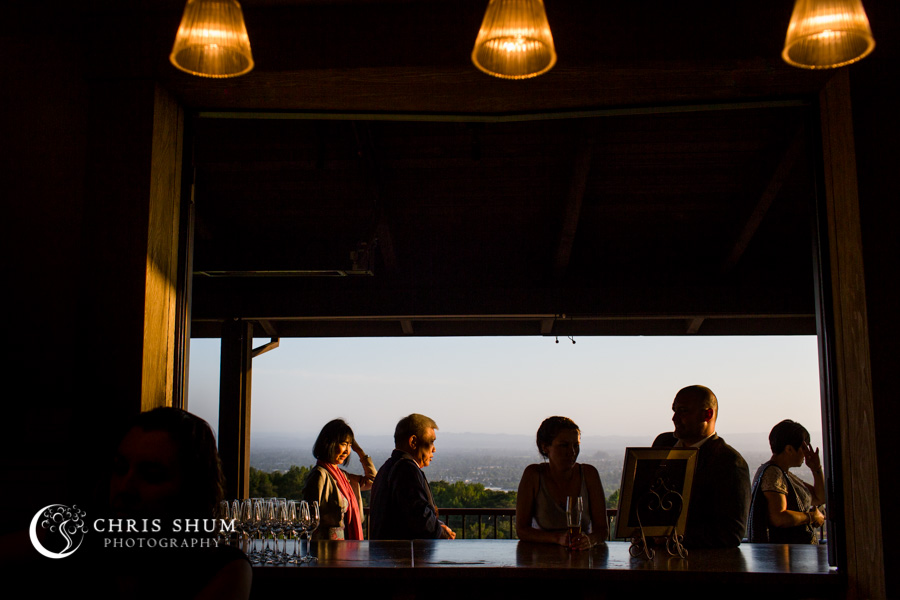 San_Francisco_wedding_photographer_Hilton_Sonoma_Wine_Country_Paradise_Ridge_Winery_27