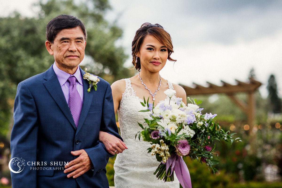 San_Francisco_wedding_photographer_RegaleWineryAndVineyards_Wedding_21
