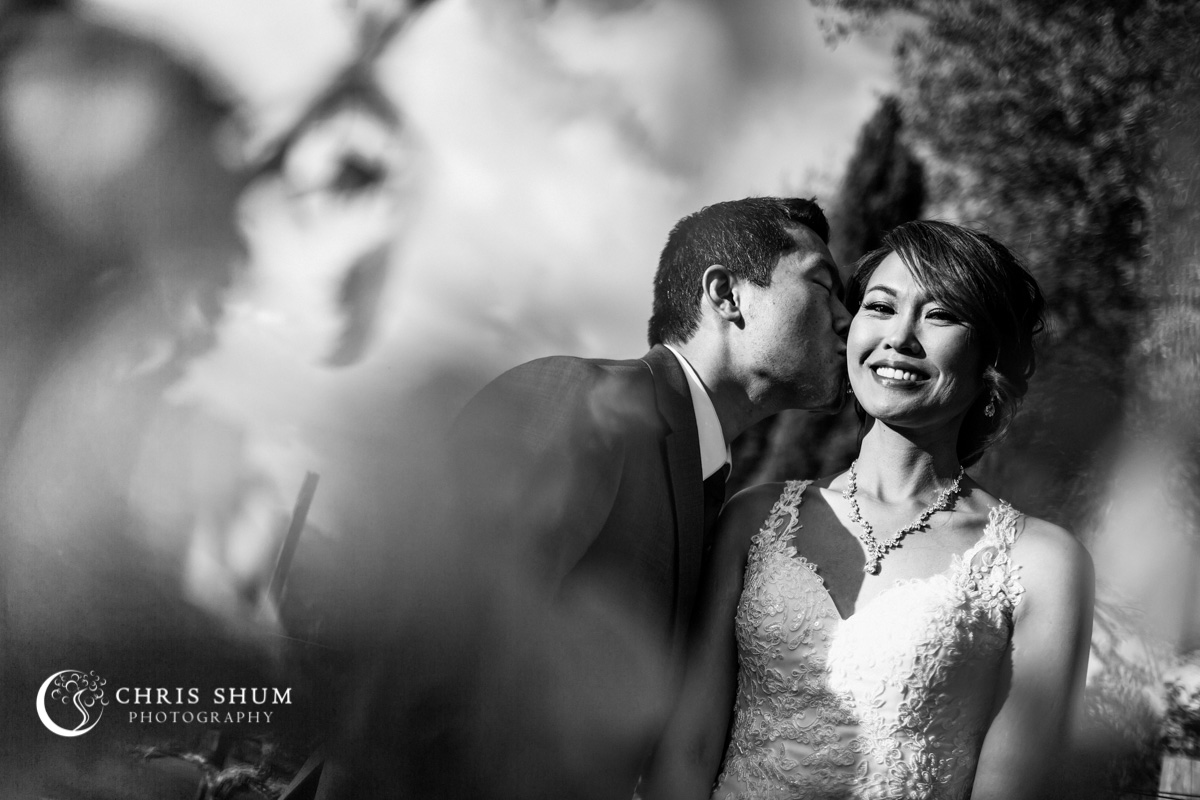 San_Francisco_wedding_photographer_RegaleWineryAndVineyards_Wedding_58