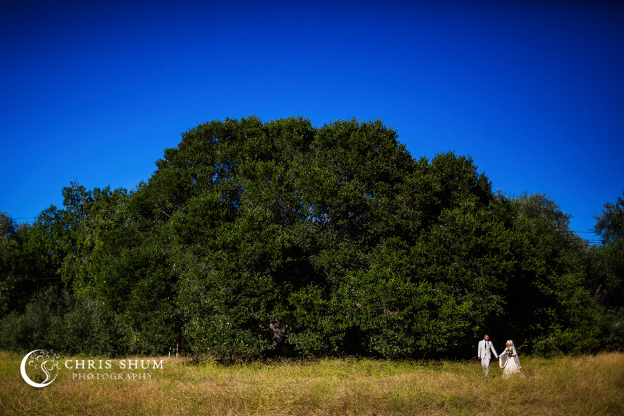 San_Francisco_wedding_photographer_San_Jose_Freedom_Hall_Rancho_San_Antonio_55