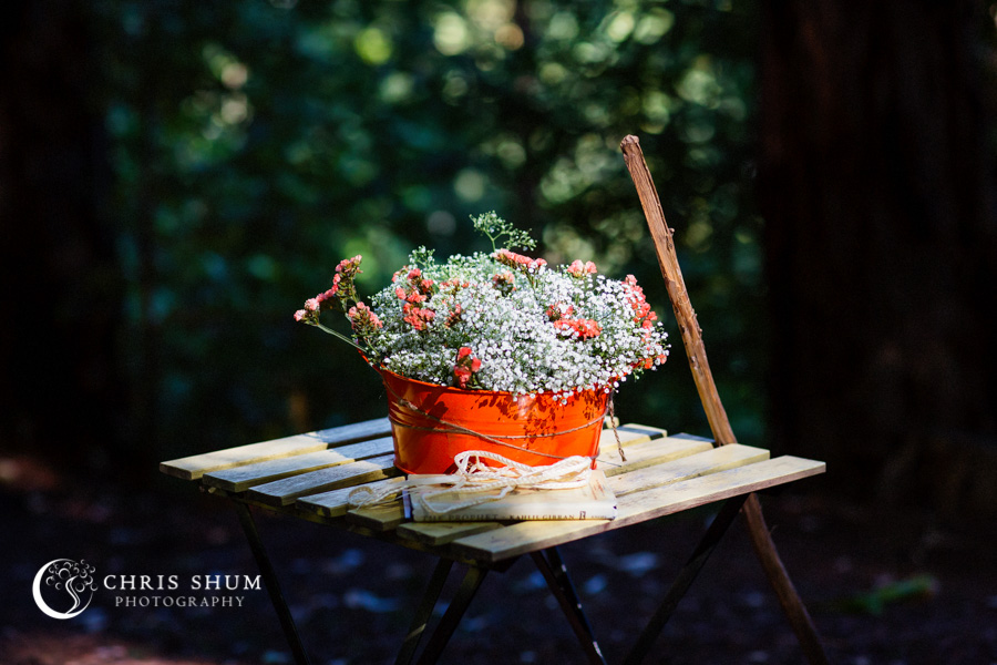 San_Francisco_wedding_photographer_Santa_Cruz_Sequoia_Retreat_Center_09