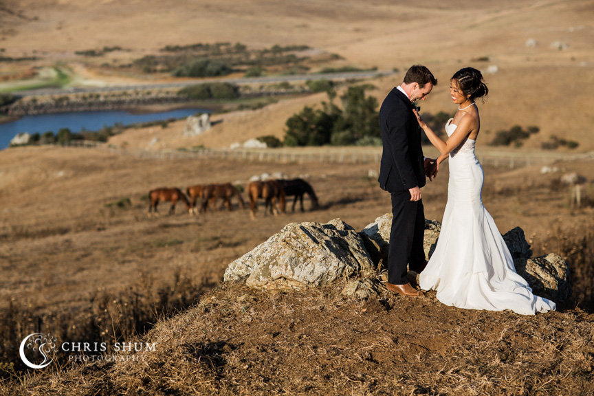 San_Francisco_City_Hall_Civil_Wedding_Sausalito_Nicasio_Danehill_Manor_Wedding_31
