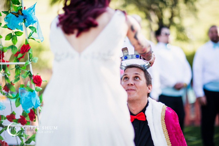 San_Francisco_wedding_photographer_San_Jose_private_residence_party_Alice_in_Wonderland_theme_17