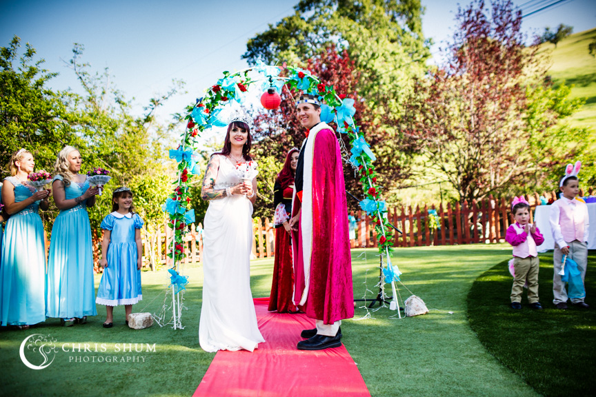 San_Francisco_wedding_photographer_San_Jose_private_residence_party_Alice_in_Wonderland_theme_19
