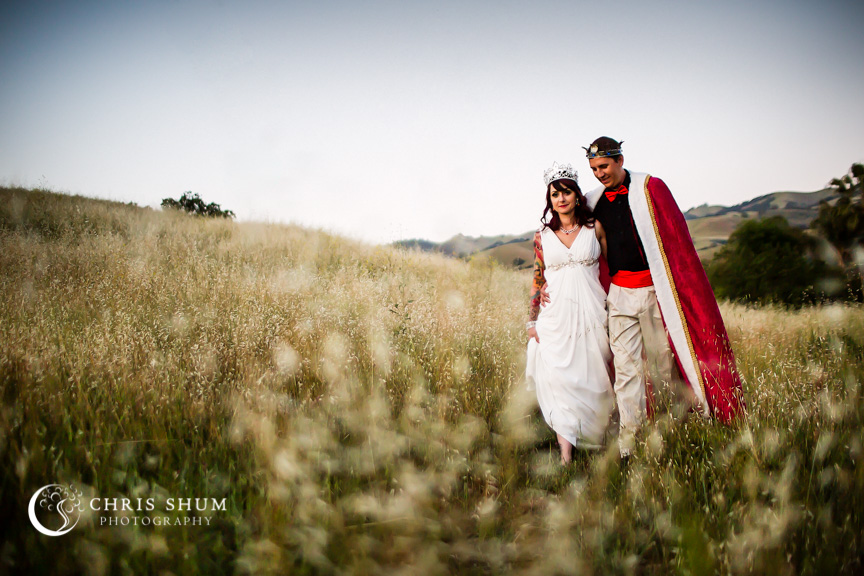 San_Francisco_wedding_photographer_San_Jose_private_residence_party_Alice_in_Wonderland_theme_24
