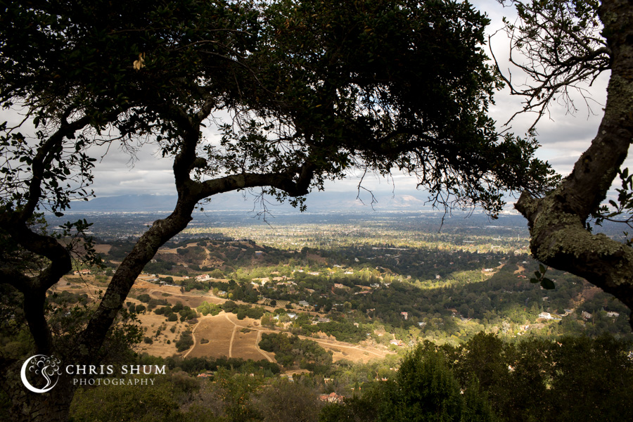 San_Francisco_wedding_photographer_Cupertino_Juniper_Hotel_Saratoga_Mountain_Winery_11