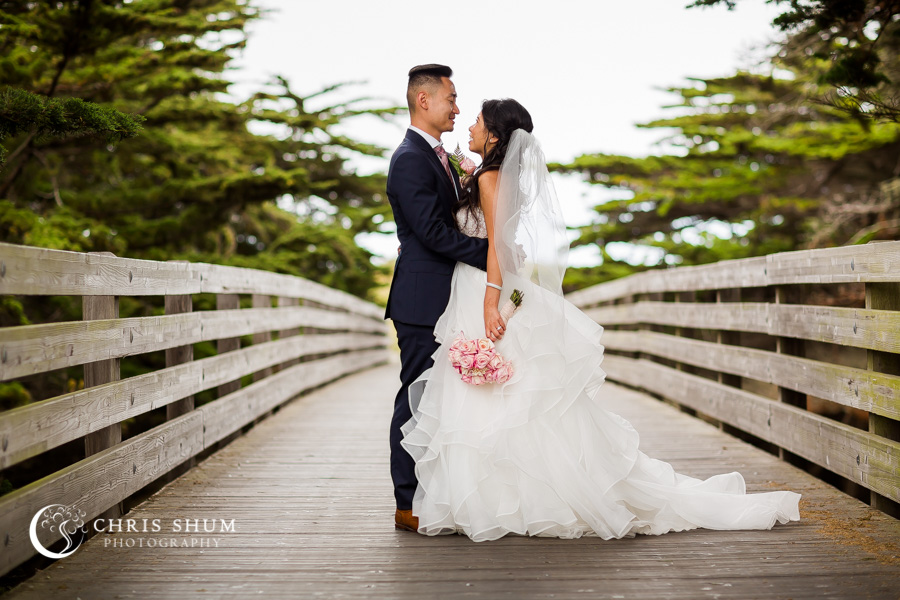 San_Francisco_wedding_photographer_San_Francisco_wedding_photographer_Hilton_Union_Square_Pulgas_Water_Temple_Half_Moon_Bay_Zen_Peninsula_01