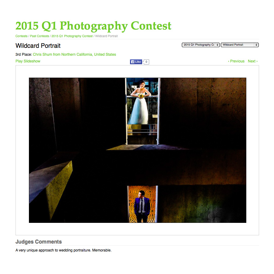 San_Francisco_award_winning_wedding_photographer_WPJA_2015_Top_WPJA_2015_Top_01
